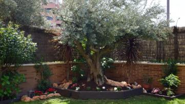 Bajo exclusivo con jardín en Sanchinarro - Gilmar