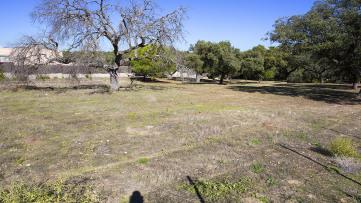 Solar Residencial en Escorzoneras-Las Encinas - Gilmar