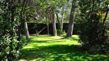 INDEPENDIENTE EN 1 SOLA PLANTA Colonia Avenida. - Gilmar