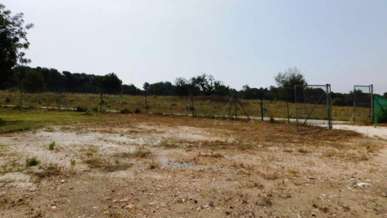Residential plot in Sierra Blanca for sale - Gilmar_
