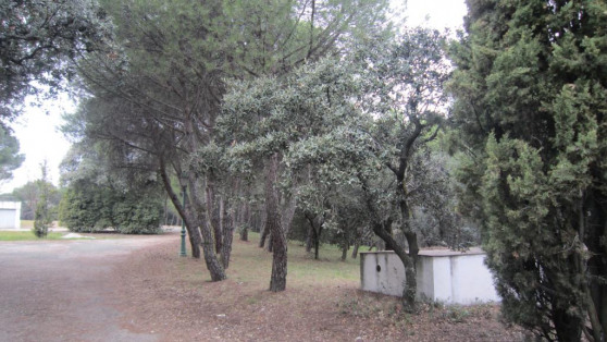 Urban plot in La Moraleja for sale - Gilmar_