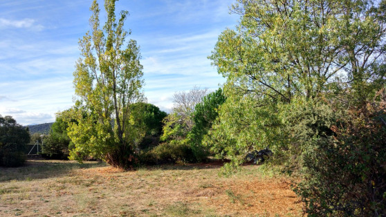 Urban plot in Berzosa-Parquelagos for sale - Gilmar_